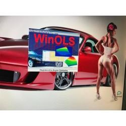 File original Peugeot 5008 1.6 HDi 0281014729 9665674480 SW 1039398249 Ktag